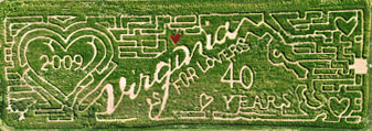 2008 Corn Maze of Virginia is for Lovers