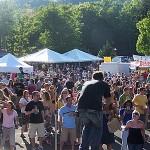 Nine Summer Wine Festivals to LOVE