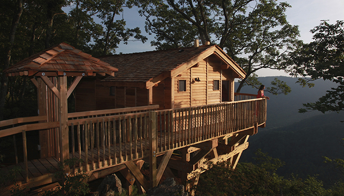 Golden Eagle Treehouse at Primland Resort