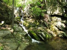 rp_White_Rock_Falls_horizontal_image.jpg