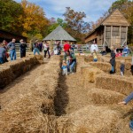Fall Festivals for Family Fun