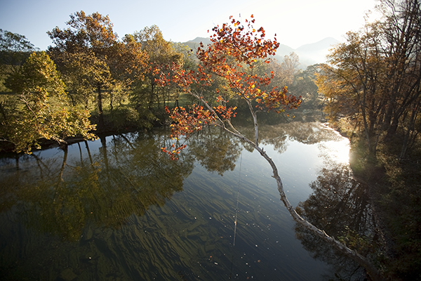 Cowpasture River, Botetourt County