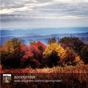 View from the Appalachian Trail by @aponyrider