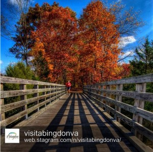 The Virginia Creeper Trail by @visitabingdonva