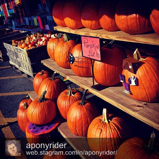 Shawnee Springs Market by @aponyrider