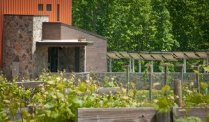 Cooper Vineyards' tasting room is certified LEED platinum and uses solar power, as well as a geothermal heating and cooling system.
