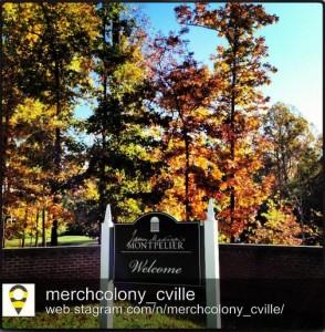 rp_merchcolony_cville_montpelier-294x300.jpg