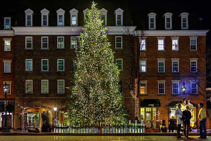 Alexandria Holiday Tree