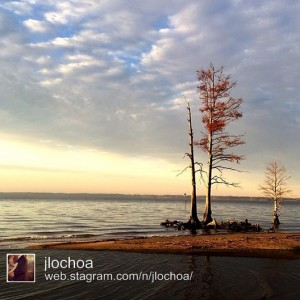The James River near Jamestown by @jlochoa