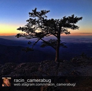 Ravens Roost on the Blue Ridge Parkway by @racin_camerabug.