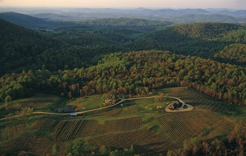 rp_agriculture-vineyard-orchard-aerial-warren-couty-aerial.jpg