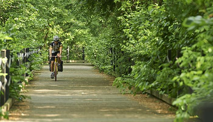 Mount Vernon Bike Trail