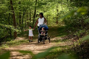 Family hikes along South River Falls trail