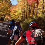 Harrisonburg with Shenandoah Mountain Touring