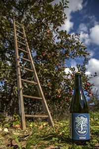 Old Hill Cider is just one of the Virginia cideries to choose from when concocting a Snakebite.