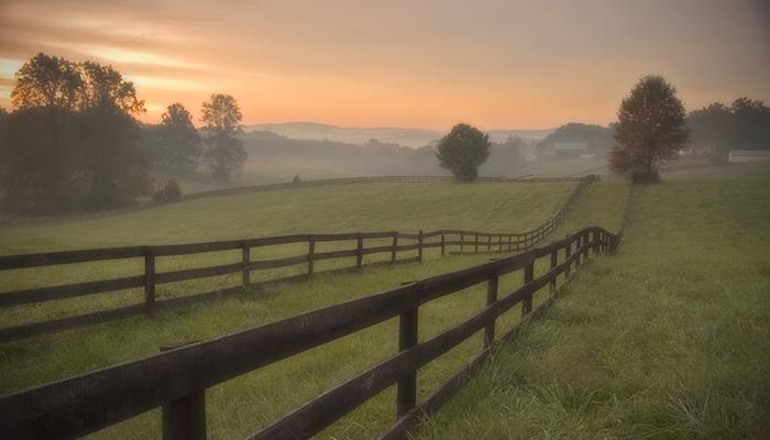 Scenic Farm in the Charlottesville area. Photo by John Hulburt.