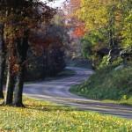 Seven for the Season: Destination Restaurants to Visit this Autumn
