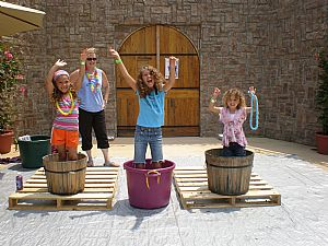 Potomac Point Winery Grape Stomping