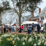 10 Spring Festivals You Don't Want to Miss