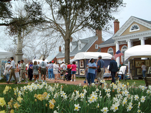Daffodil Festival, Gloucester