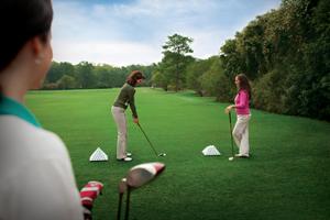 Golden Horseshoe Golfing