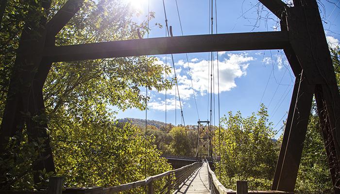Buchanan Swinging Bridge