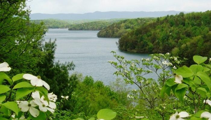 Philpott Lake.