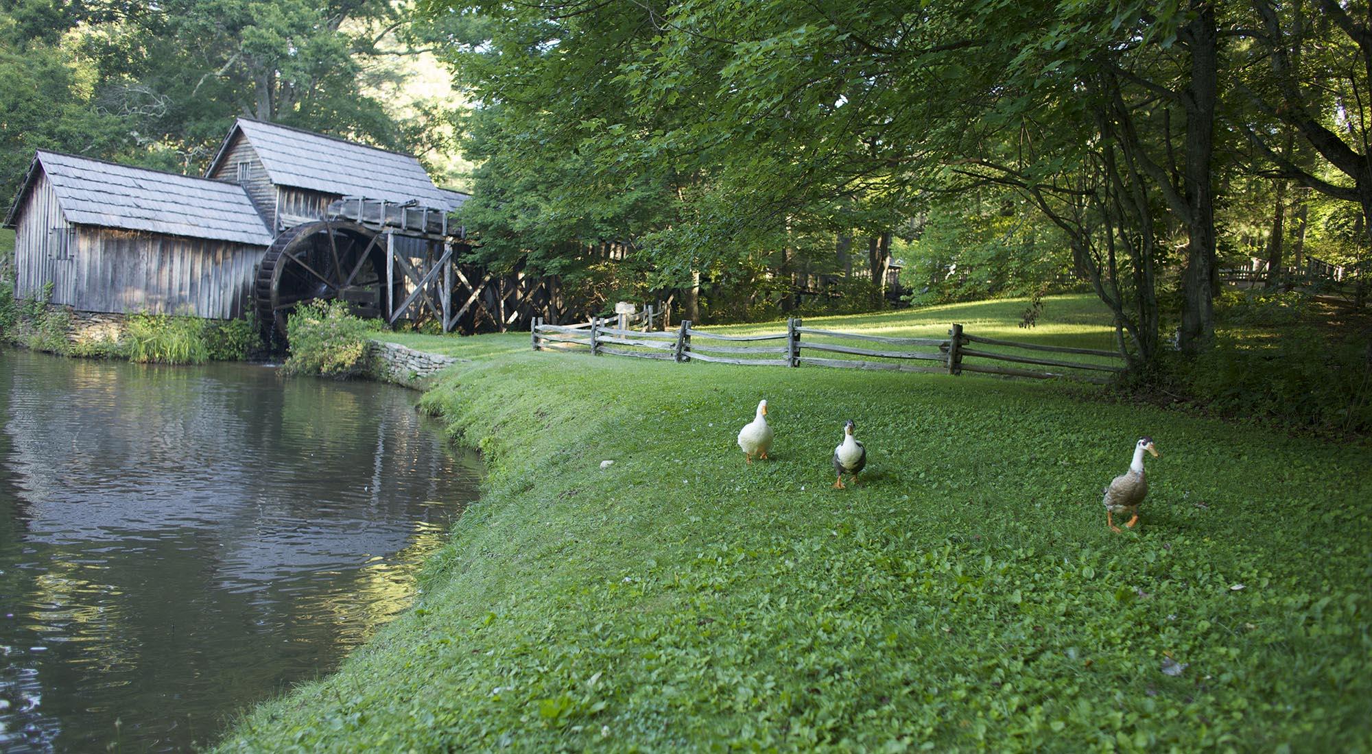 Mabry Mill. Photo by CameronDavidson@CameronDavidson.com.