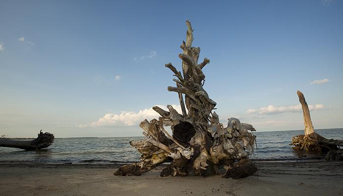 Hughlett Point Natural Area Preserve