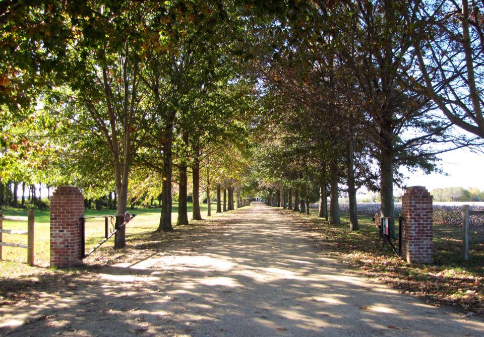 Entrance to Shirley Plantation