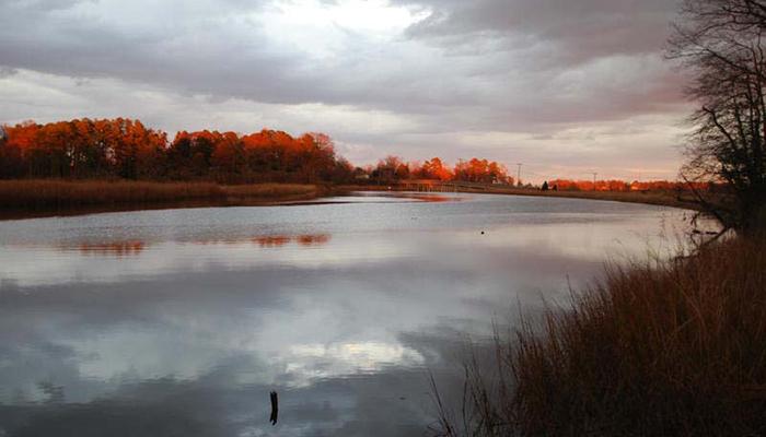 Fall in Smithfield. Photo by Tammy L. Hill.