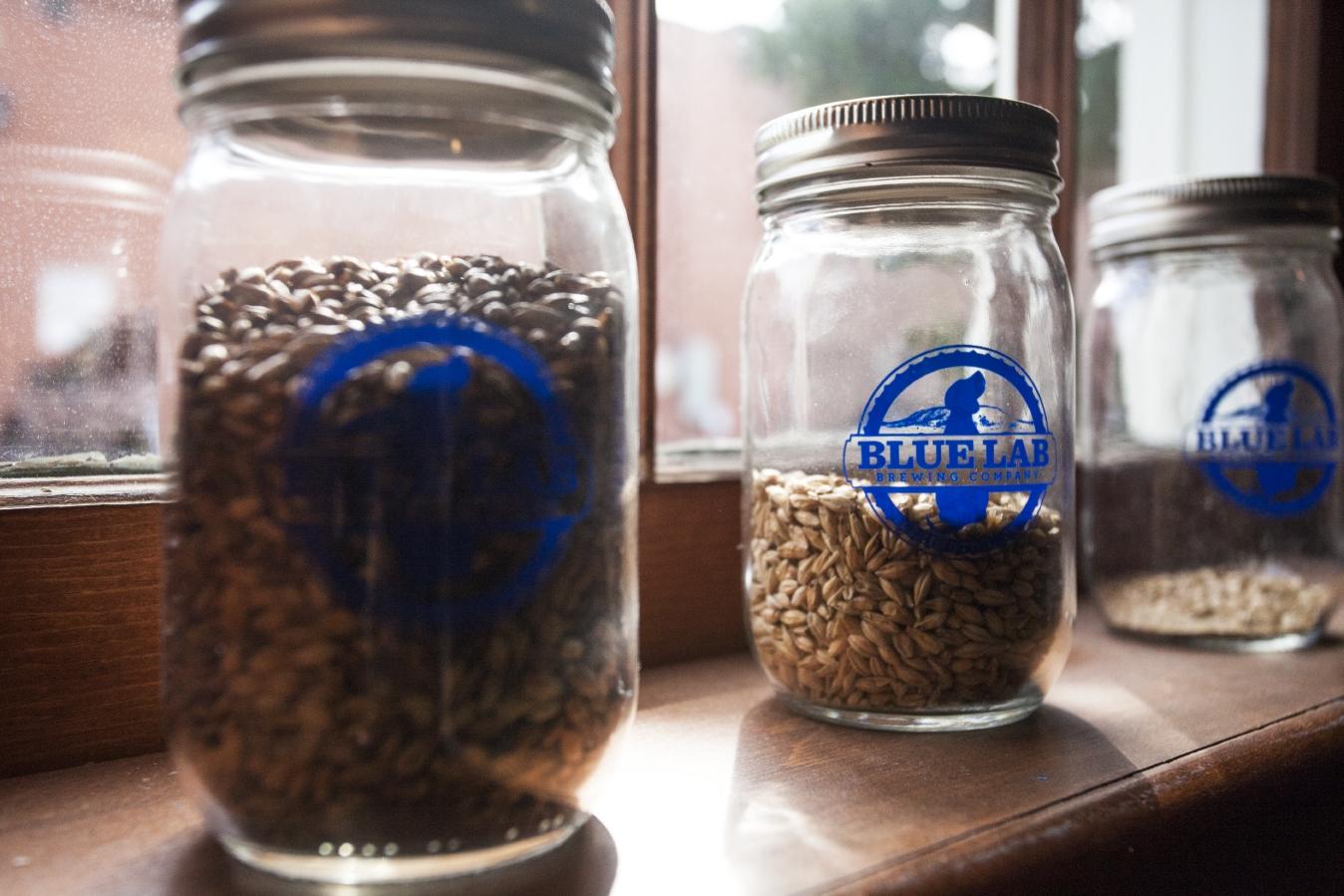 Blue Lab Brewing Company