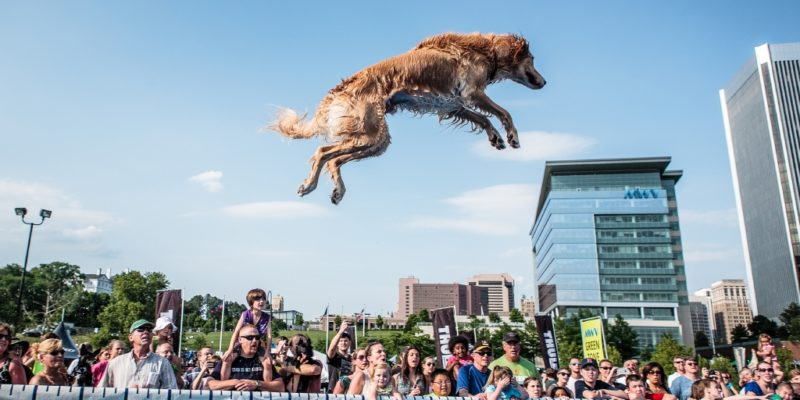East Coast's annual premier outdoor lifestyle festival on Richmond's urban riverfront.