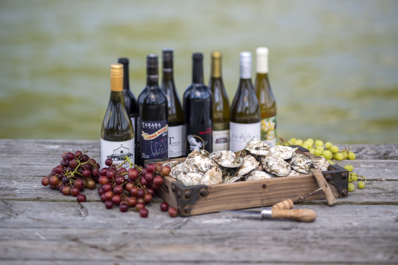 Virginia Wine and Oysters
