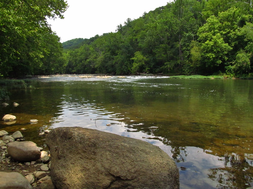 Trailside view of the Roanoke River at Explore Park