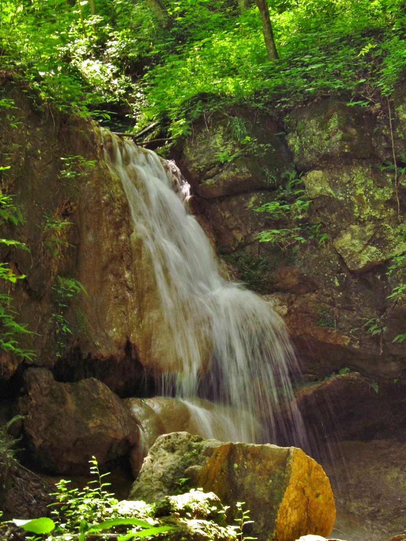Falls Ridge Preserve