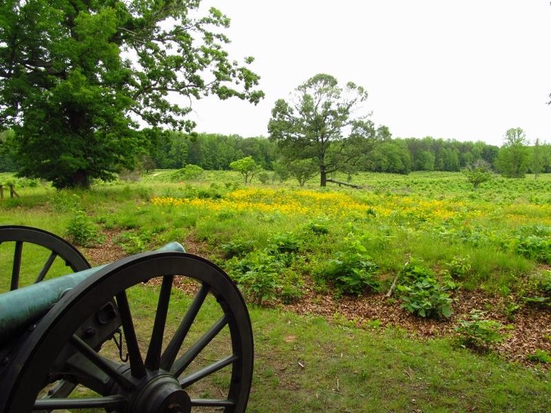 Spotsylvania Battlefield (800x600)