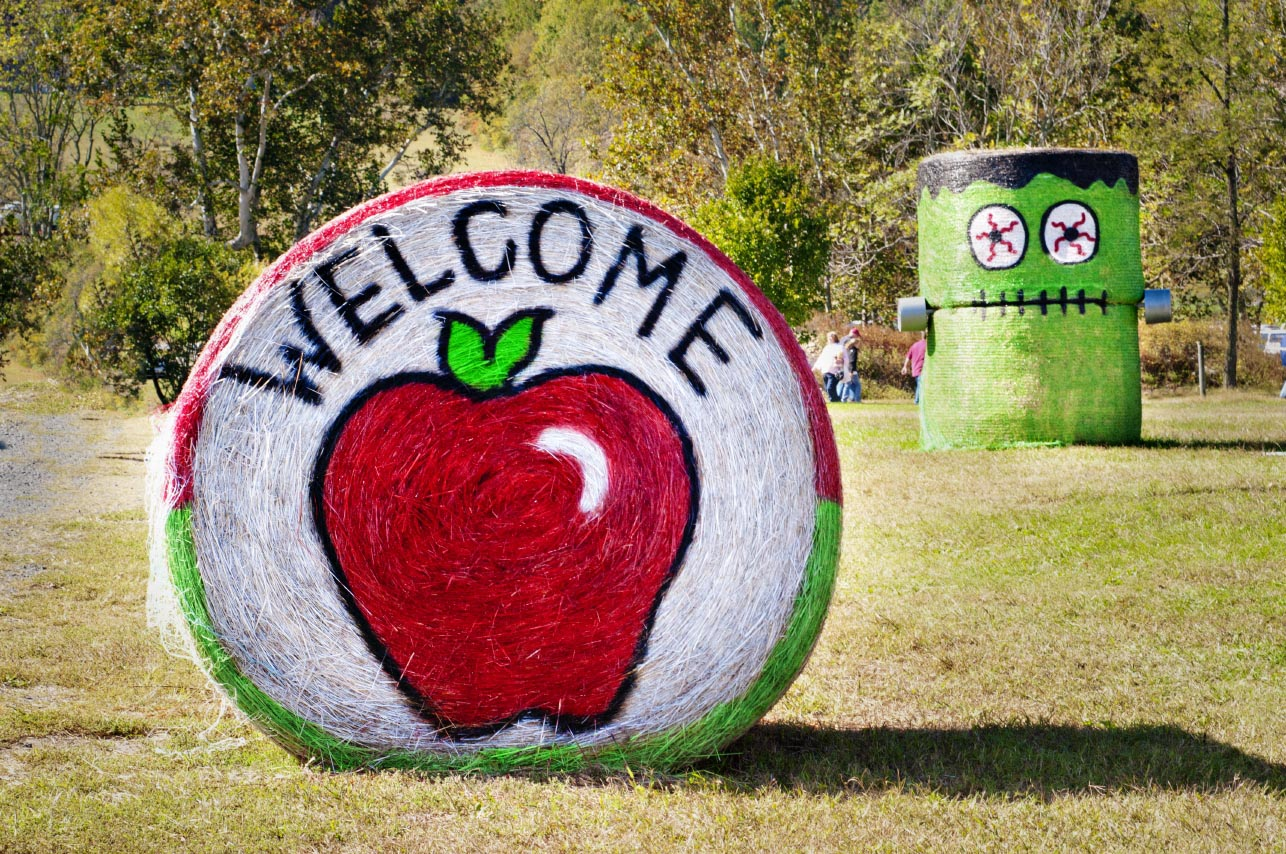 Graves Mountain Apple Harvest Festival
