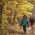 10 Great Virginia Hikes for Viewing Fall Foliage