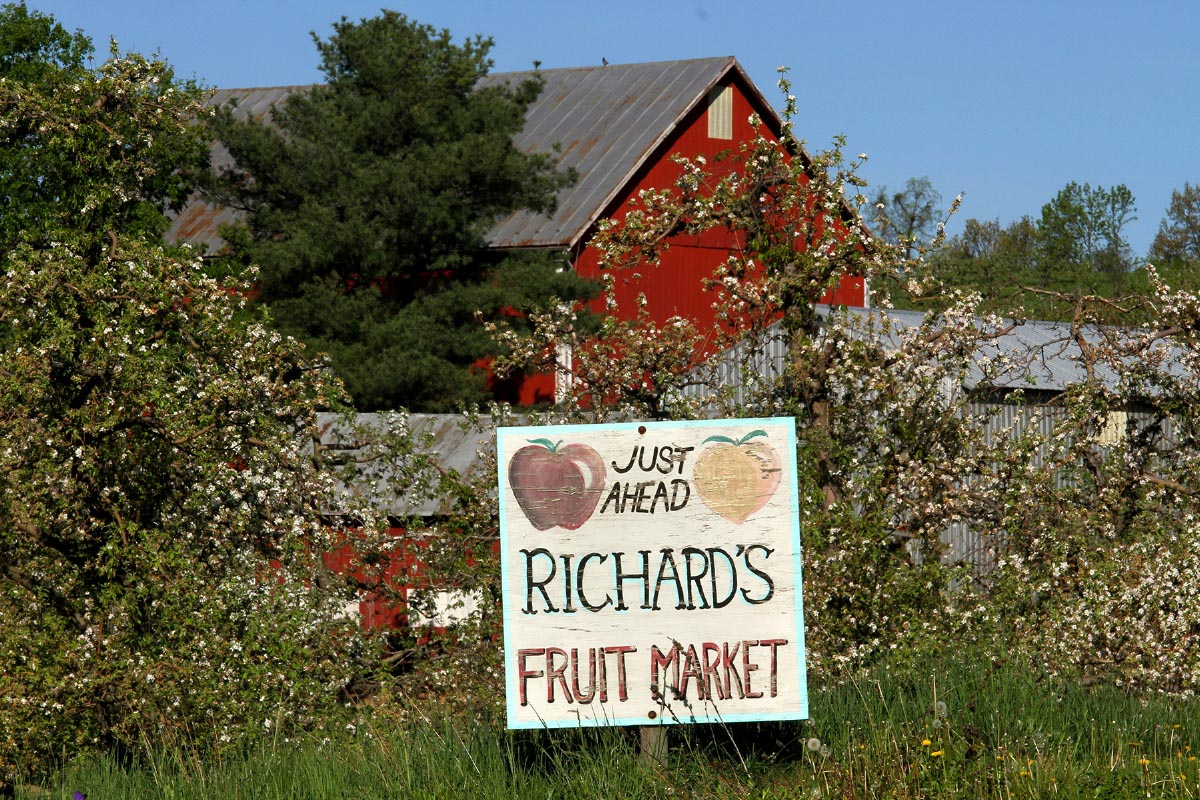 Richard's Fruit Market