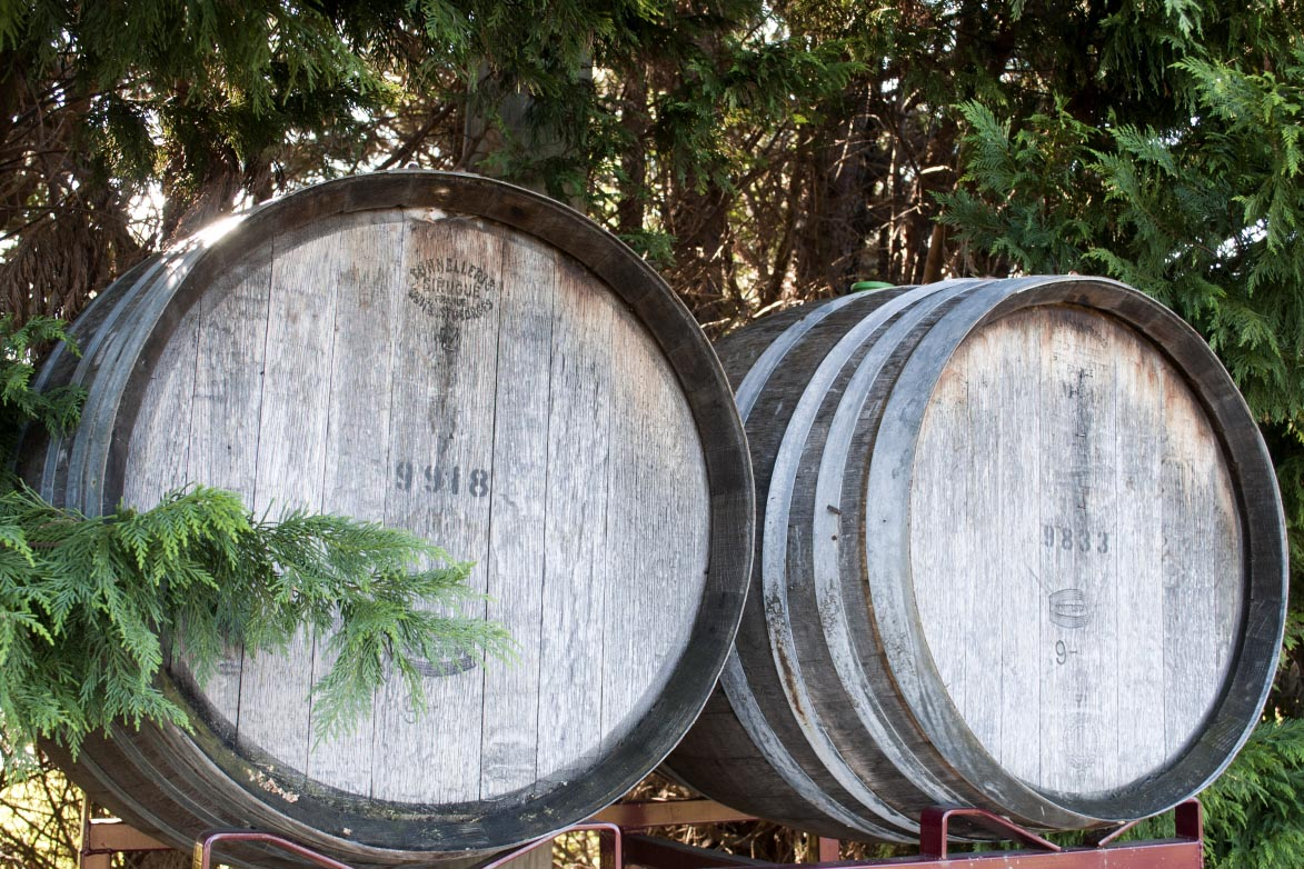 Flying Fox Winery