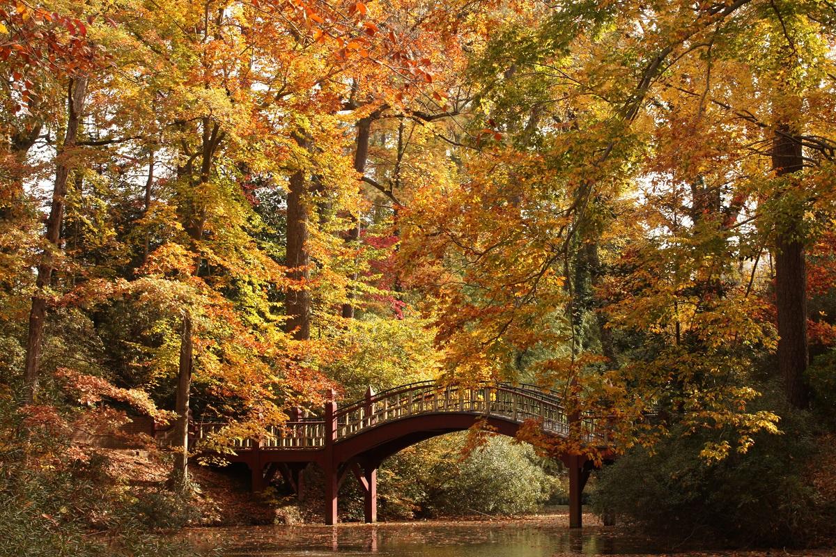 William and Mary Crim Dell Pond bridge