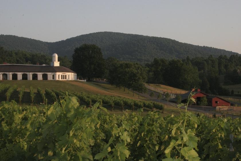 Barboursville Vineyard