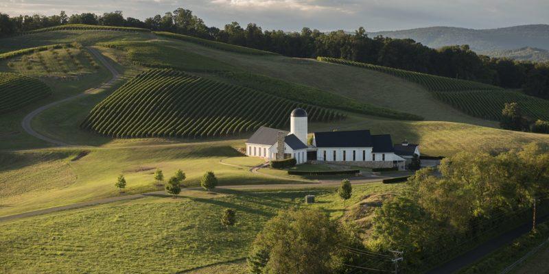 RdV Vineyards