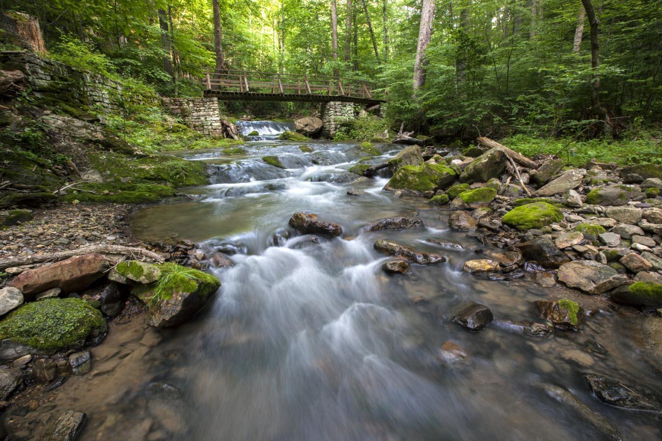 Roaring Run Falls Hike