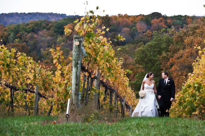 veritas vineyards wedding