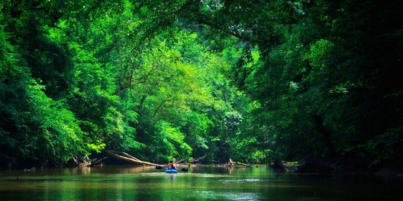 dan river paddling