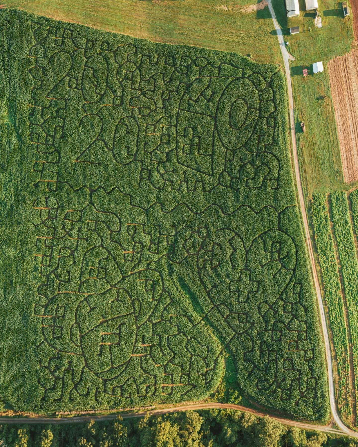 Yoder's Farm Corn Maze 2020