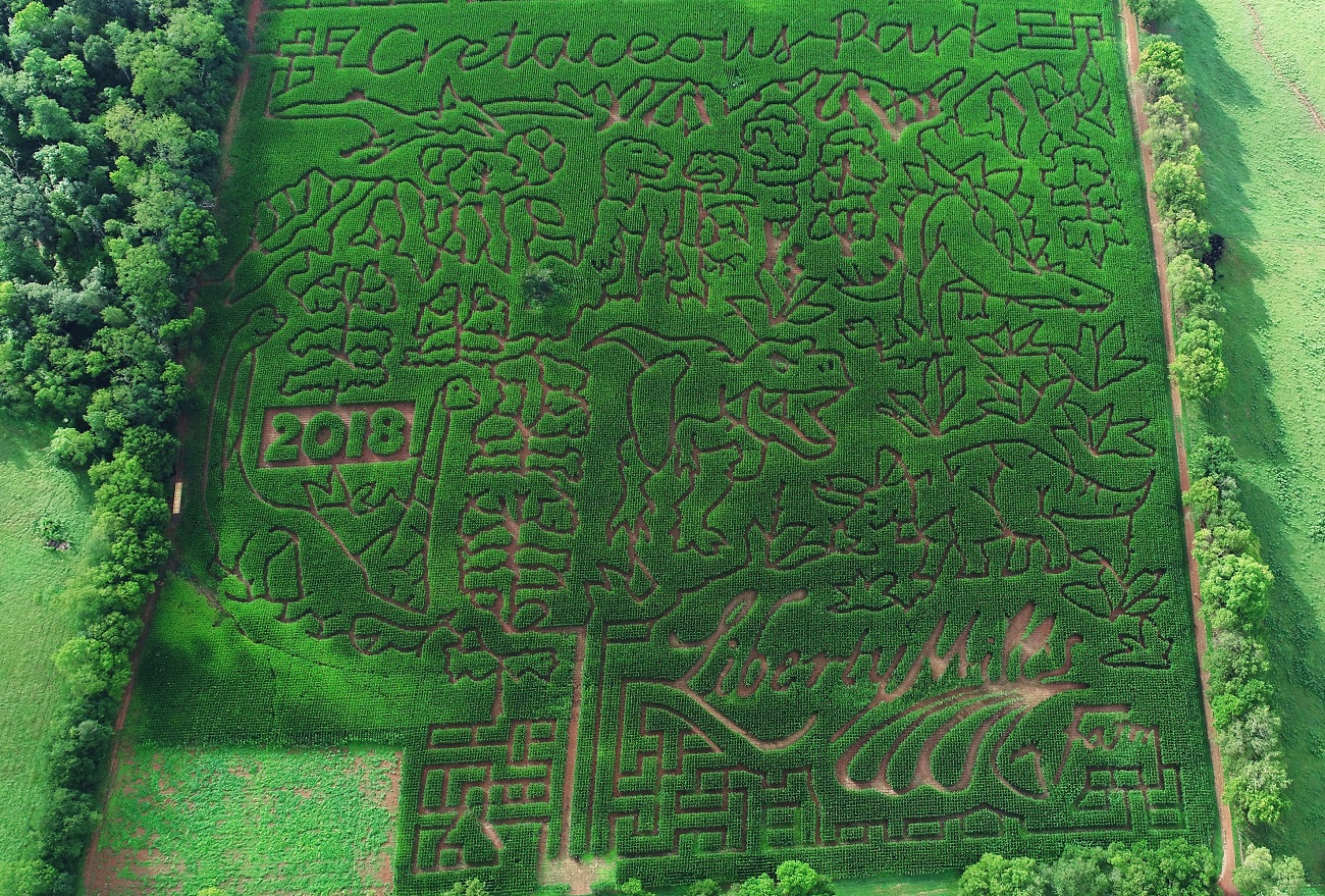 corn maze virginia beach