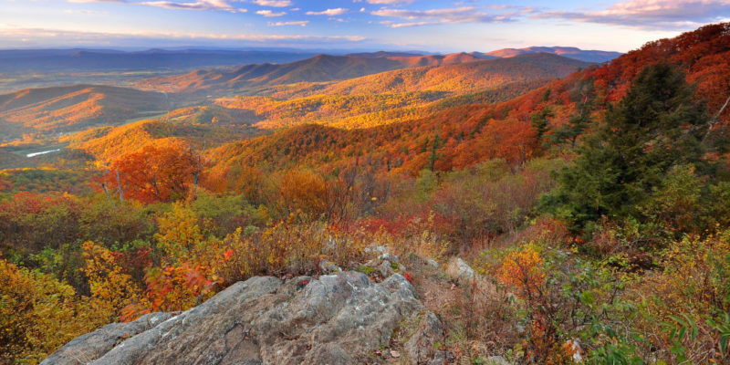 fall in Virginia Shenandoah Park
